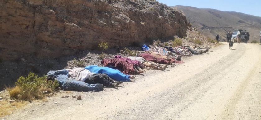 Accidente causa casi 20 muertos en el norte potosino