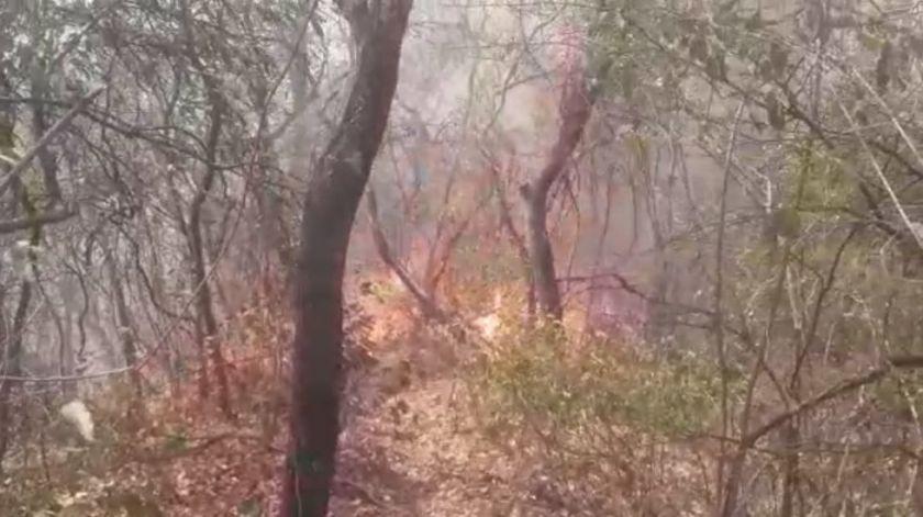 Instituciones de Chuquisaca piden ayuda internacional para sofocar los incendios