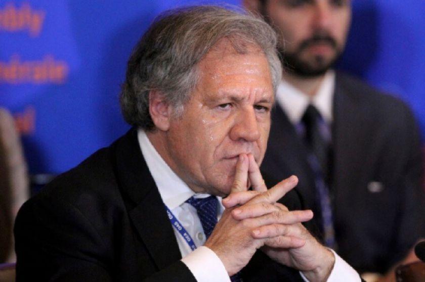 """Almagro ratifica los hallazgos de la OEA en las elecciones de 2019: """"nunca han sido refutados"""""""