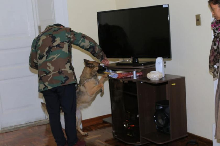 Inspección de la FELCN descarta la presencia de droga en la Gobernación de Chuquisaca
