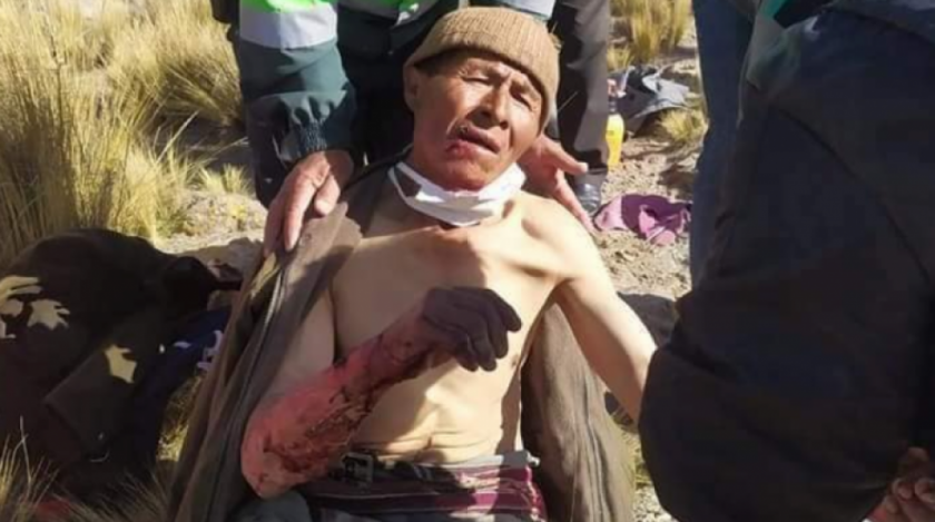 Campesino se enfrenta a puma salvaje para defender a sus animales