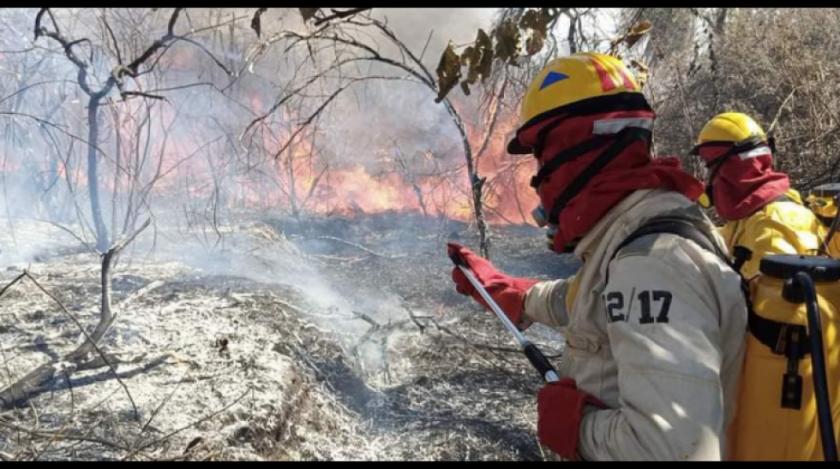 """Ambientalistas piden a la ABT que anule la resolución que autoriza las quemas """"controladas"""""""