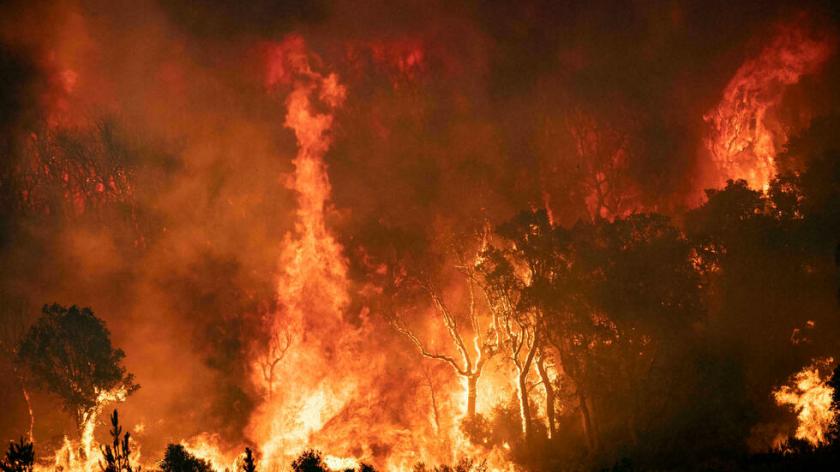 Reportan que el  norte de Marruecos está muy afectado por vastos incendios forestales