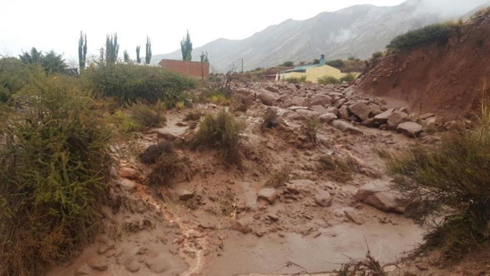 Las riadas dañan  casas, caminos y la producción del agro potosino