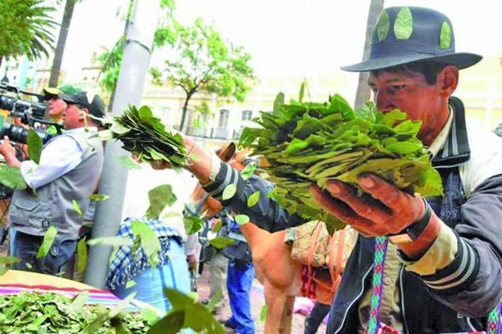 Cocaleros de Yungas rompen alianza con el presidente Morales