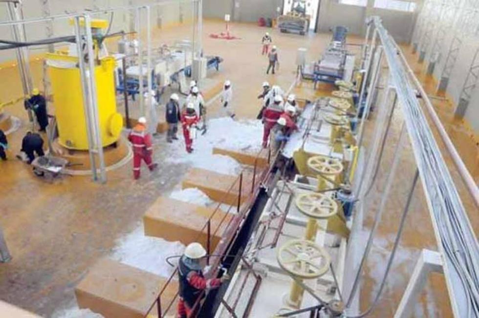 Habilitan a diez empresas para construir la planta de litio
