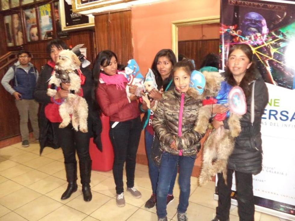 Algunas mascotas que participaron en el concurso.