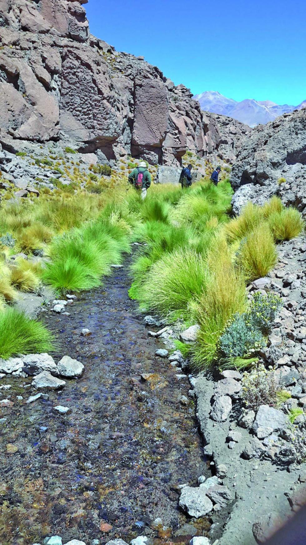 Las aguas que nacen en el Quetena solamente benefician a las mineras de Chile.