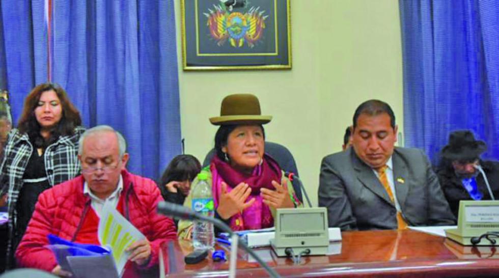 El vicepresidente y la presidente del Órgano Electoral Plurinacional, Antonio Costas y María Eugenia Choque.