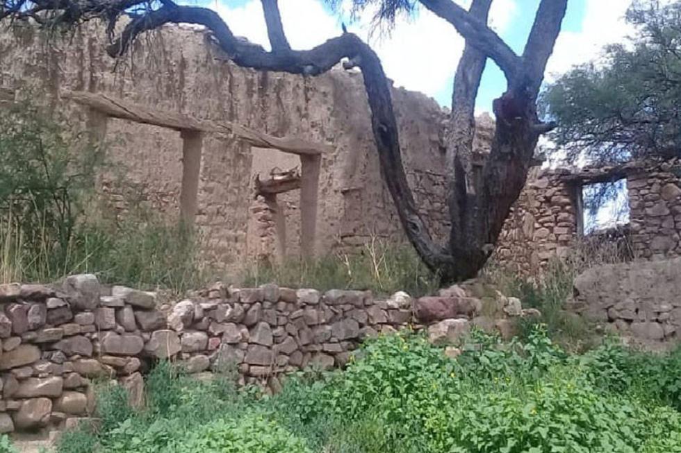 Gobernación prevé salvar la casa de Carlos Medinaceli