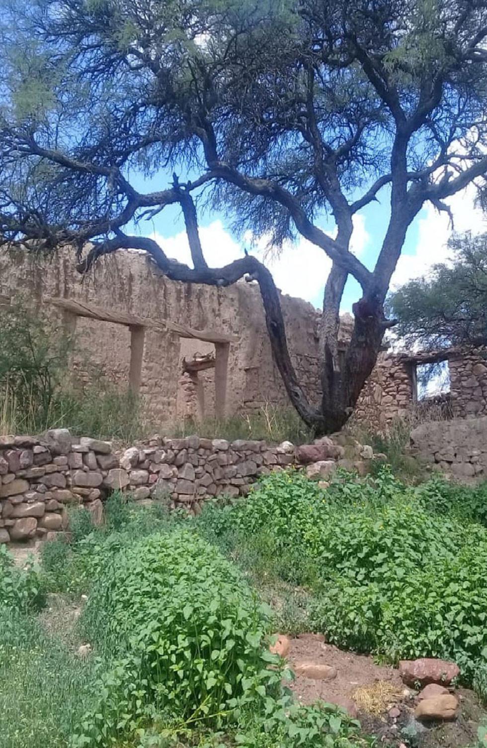 La casa donde vivió el escritor en la comunidad de Chequelte.