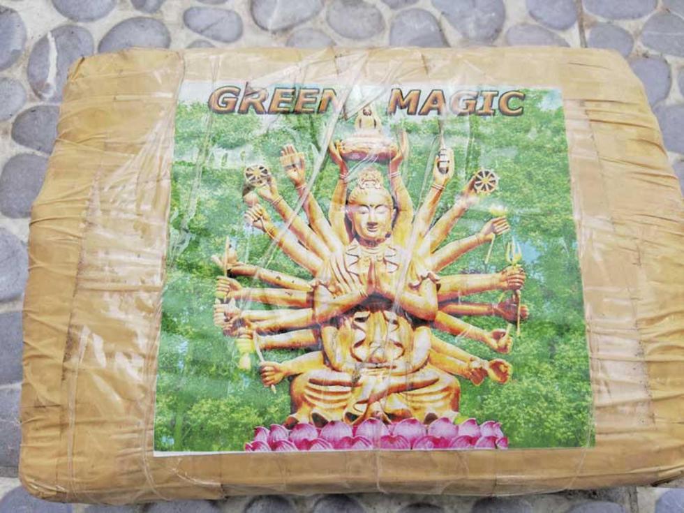 Este el logo y la imagen de la Diosa Guanin.