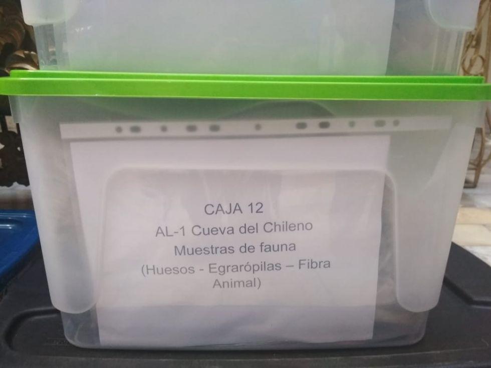 Objetos de la Cueva del Chileno.
