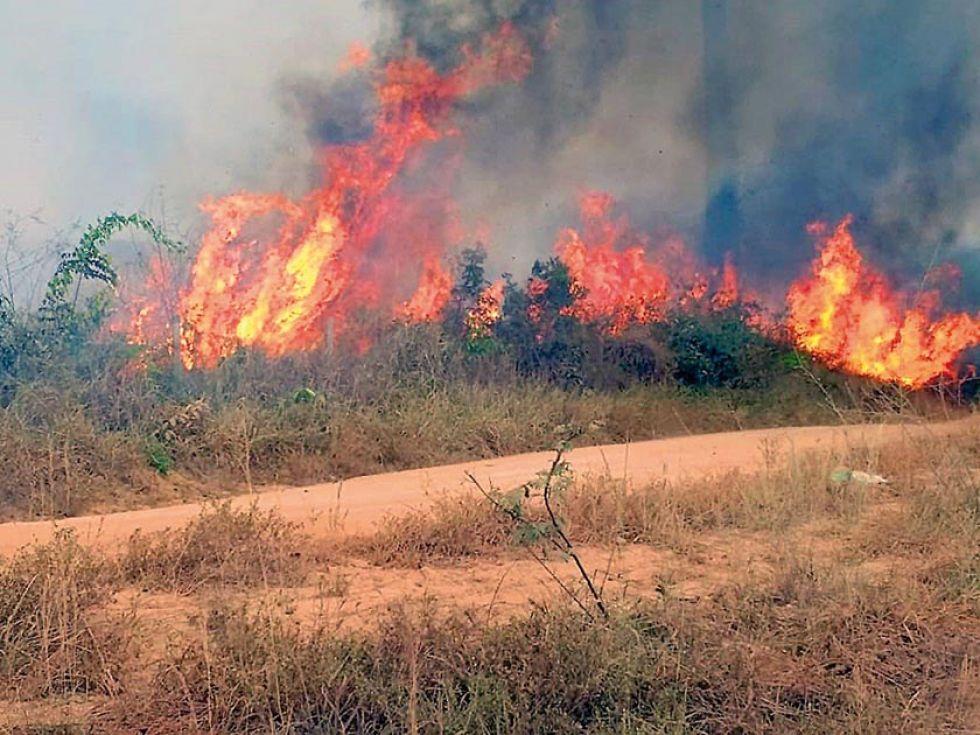 DESASTRE. Una imagen del 21 de agosto, cedida por la Brigada Municipal de Porto Velho que muestra uno de los incendios que azotan la Amazonía brasileña.