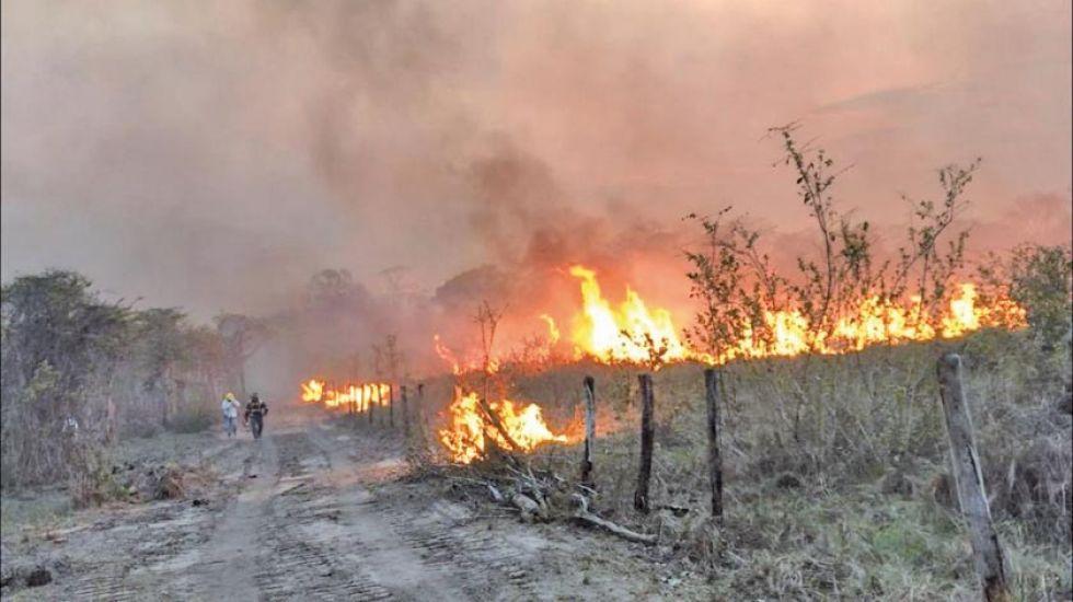 El fuego en San Matías amenaza a comunidades y al Área Natural de Manejo Integrado. hogar de la paraba azul.