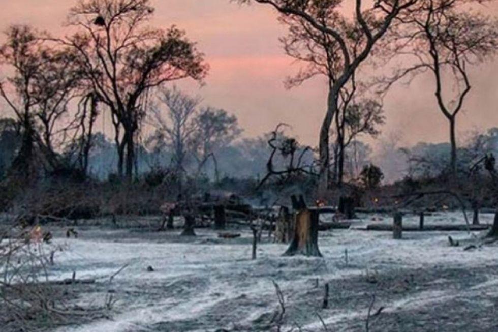 Solo las lluvias consiguen apagar últimos incendios en la Chiquitania