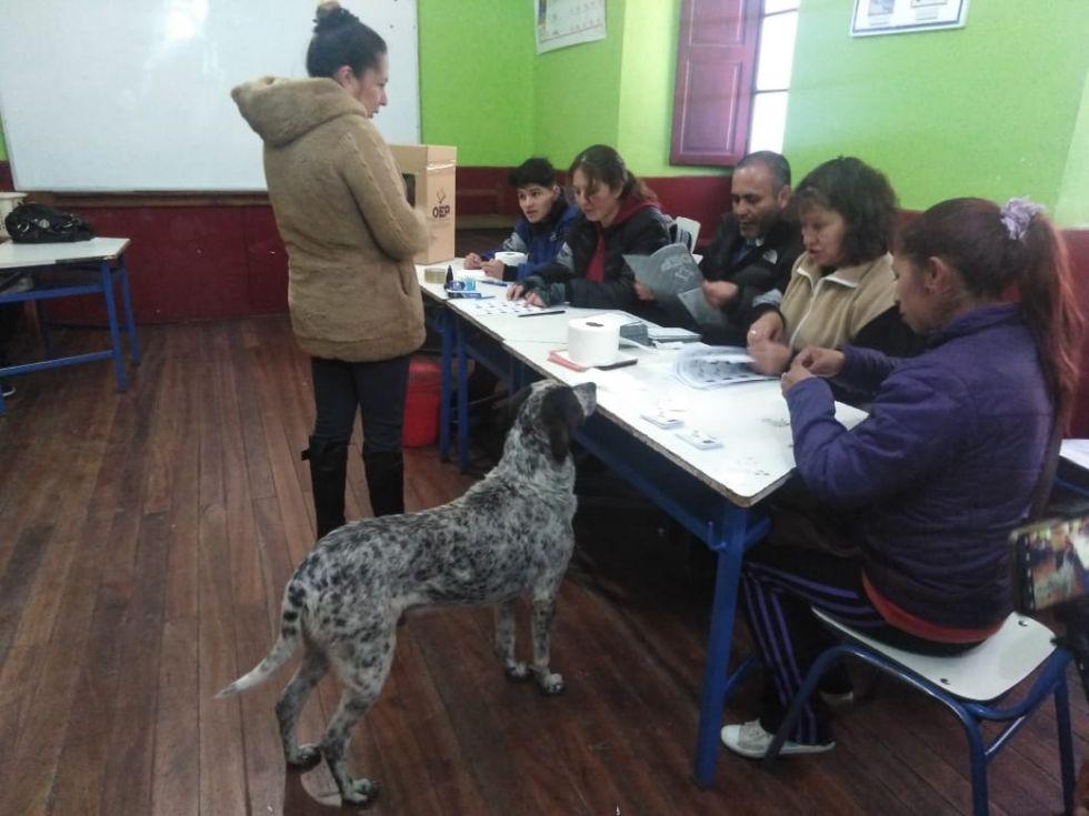 Rodrigo acudió  a votar en la escuela Santa Rosa