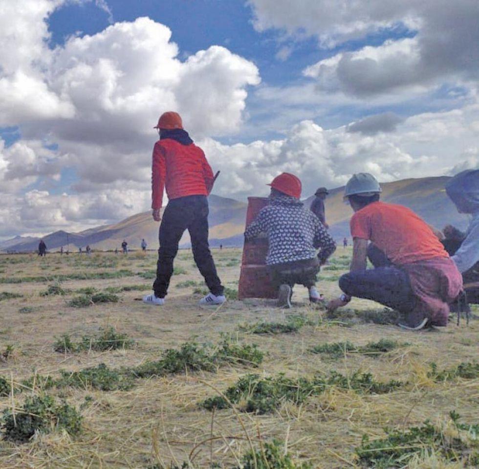 Los potosinos que eran parte de la caravana fueron baleados desde los cerros.