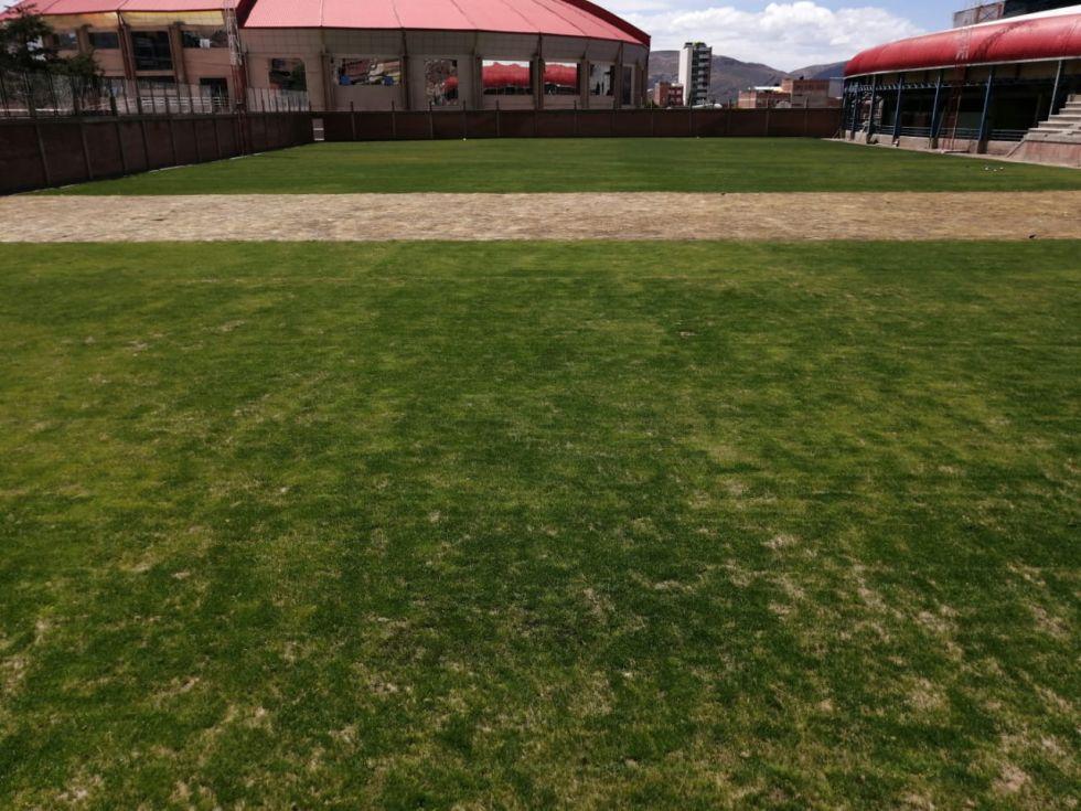 Será un campo deportivo con césped natural.