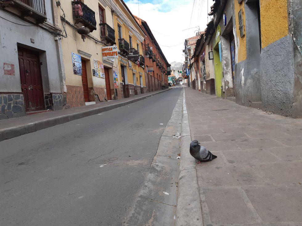 La paloma, que es símbolo del Espíritu Santo para la Iglesia Católica, puede adueñarse ahora de las solitarias calles de la Villa Imperial.