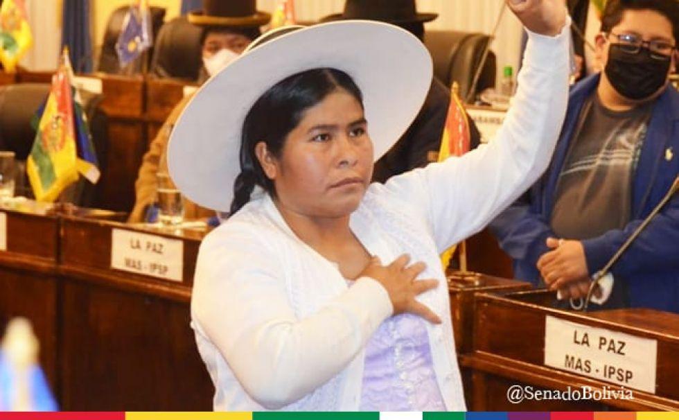 En la sesión, la senadora Cussi prestó el juramento de rigor.