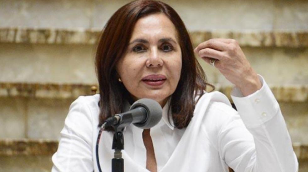 """Bolivia pide presencia organismos internacionales para evitar """"prácticas autoritarias"""" del MAS"""