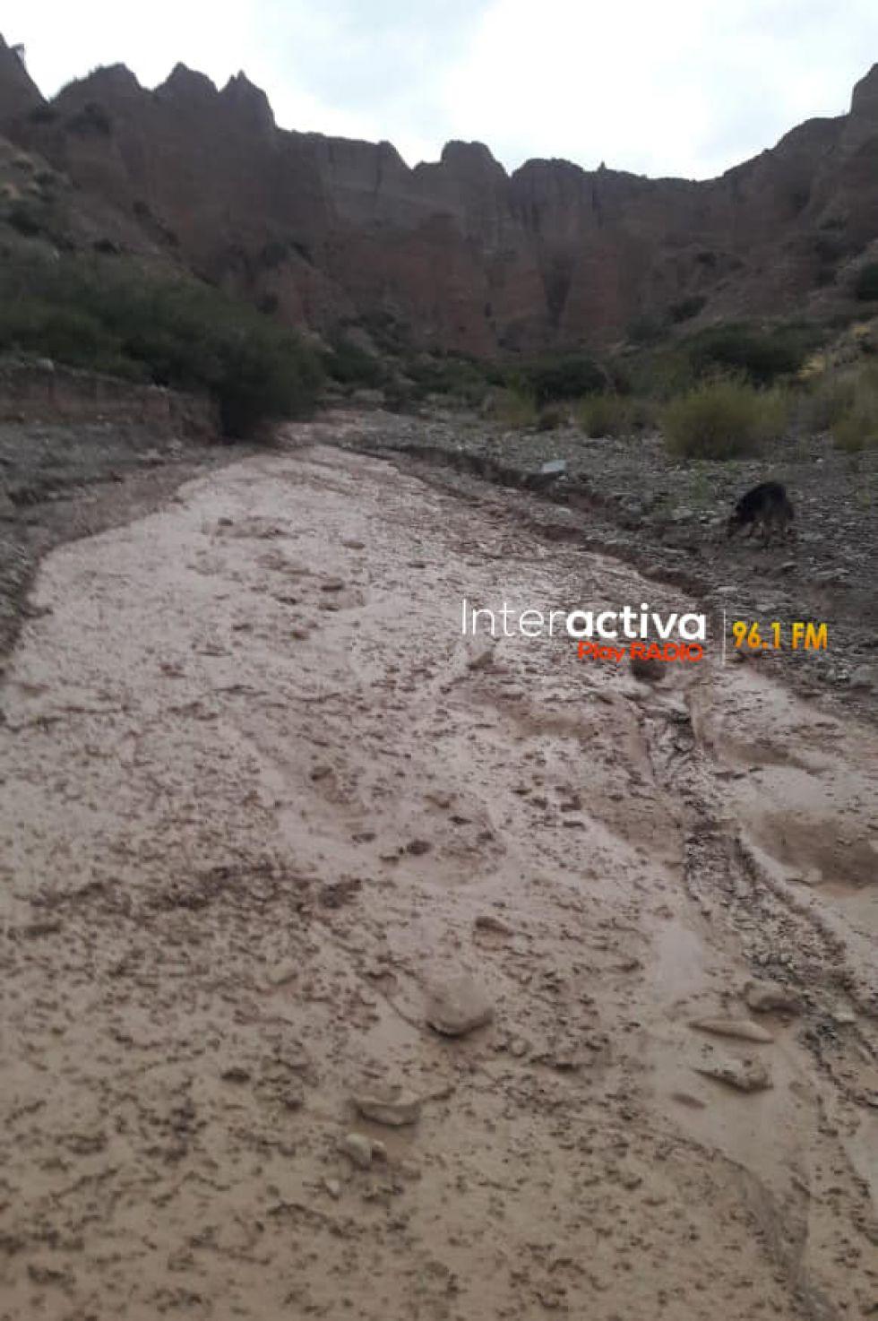 Una mazamorra mata a una treintena de ovejas en Tupiza