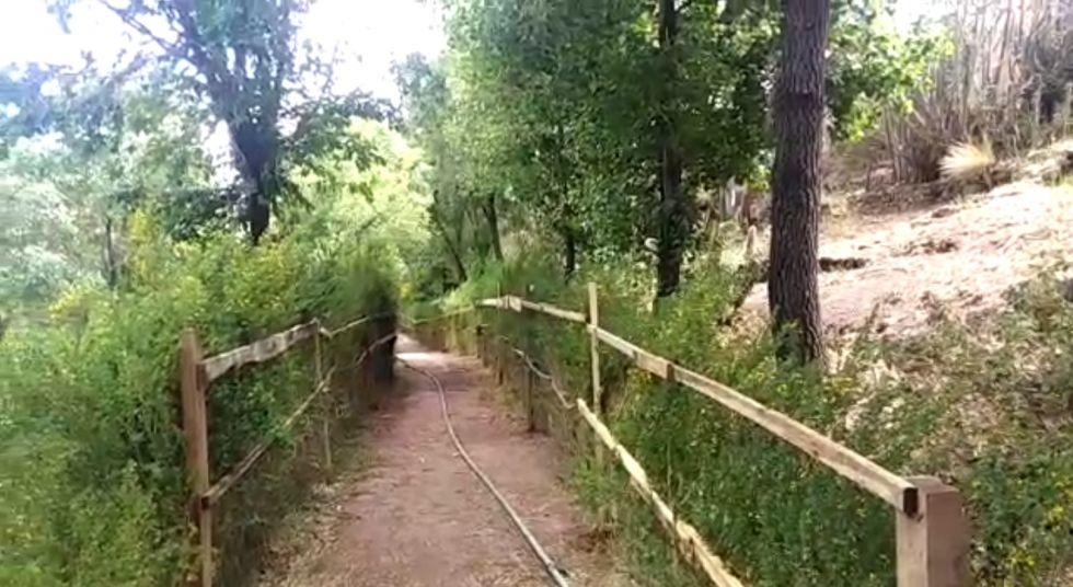 El Jardín Botánico se abre tras más de ocho meses de cierre