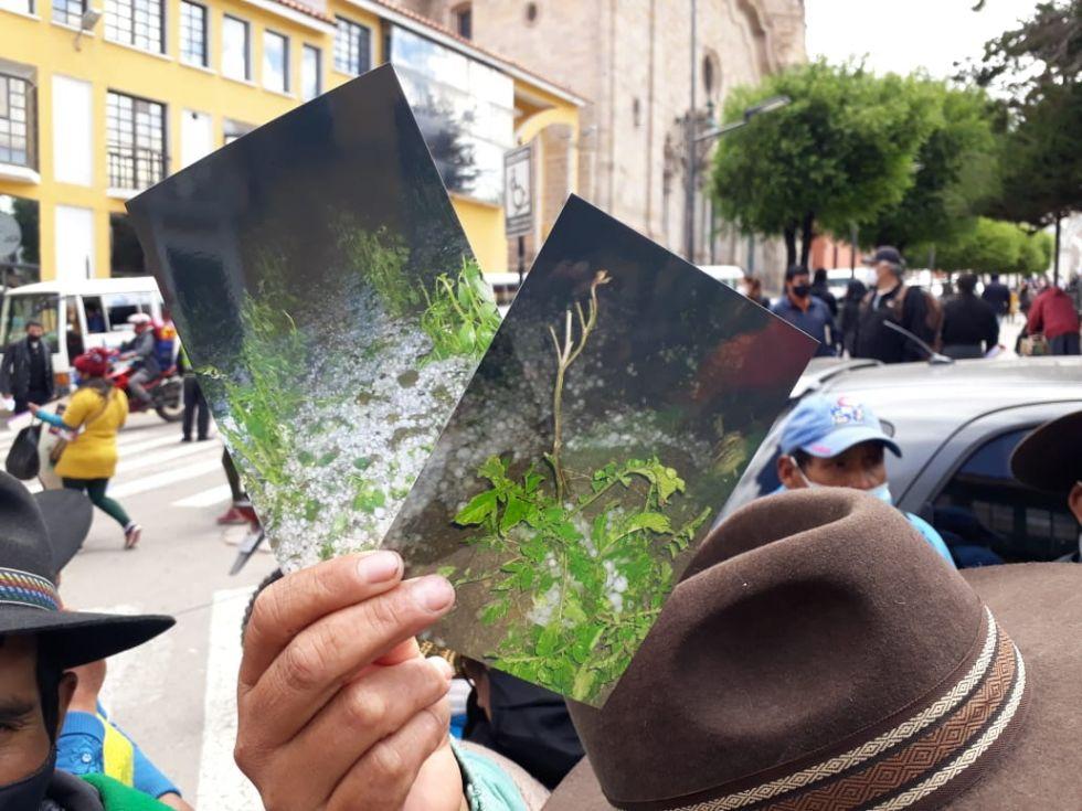 Los comunarios mostraron los efectos del clima