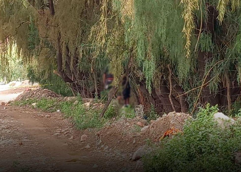 En Tupiza encuentran los cuerpos de dos jóvenes ahorcados