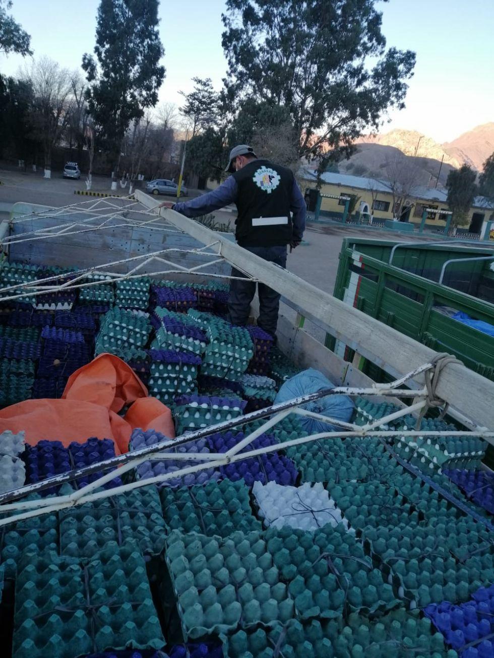 El trabajo se realizó en el sector de las Pampas de Mochará en Tupiza.