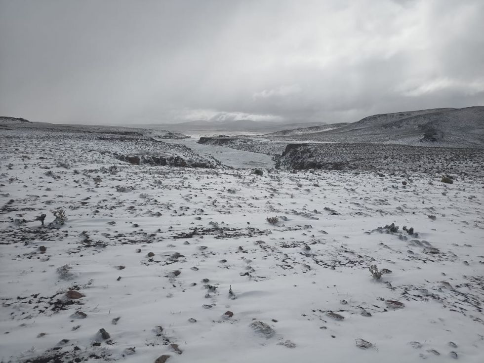 La nieve ha cubierto por completo Laguna Colorada, cuyas aguas se han congelado.
